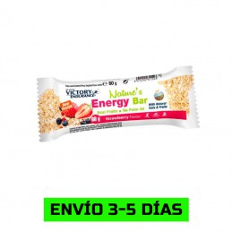Nature's Energy Bar - 60g
